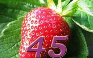 Торт 45 баба ягодка
