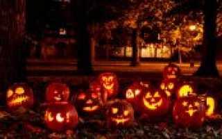 Тематические клипы на хэллоуин для взрослых